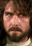 James Brolin as George Lutz