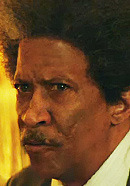 Reg E. Cathey as Don King