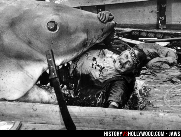 is jaws a true story learn the real inspiration for jaws