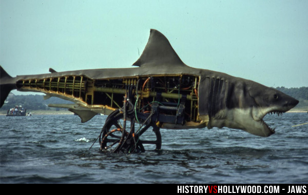 Is Jaws a True Story? Learn the Real Inspiration for Jaws