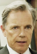 Bruce Greenwood as Gil Garcetti